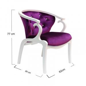 Royalty Fuchsia Chair